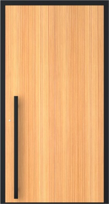 Drzwi zewnętrzne aluminiowe AB9